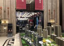 上海售楼处开放,要排队买房?真实情况是这样子……