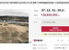 利嘉120亩重点项目被拍卖!房产项目频暴雷!官方发布购房风险提示